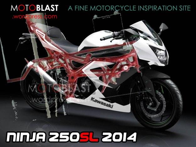 kawasaki ninja 250SL 1 tralis 5