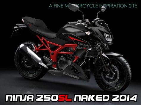 kawasaki ninja 250SL nakedbike1
