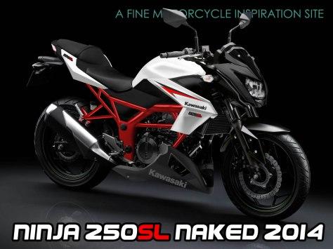 kawasaki ninja 250SL nakedbike2