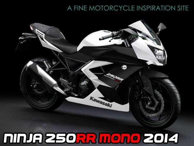kawasaki ninja sl naked bike uapppiikk tenan
