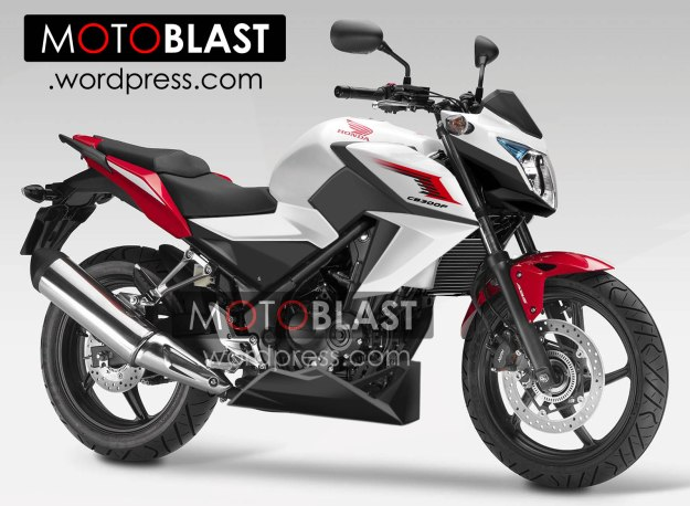 new cb300F-next tiger250R FI 1