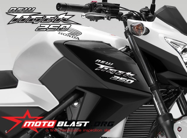 next new tiger 250 motoblast- front