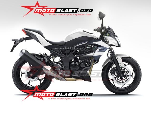 ninja 250 RR mono naked-finish-3